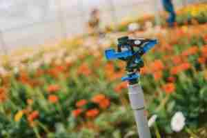 Irrigation and Sprinkler System Installation in Portland - (503) 894-5917
