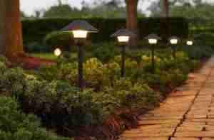 Landscape Lighting Installation in Portland, Oregon